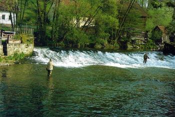 Das Wehr bei Lanzendorf am Weißen Main. Die Gewässerqualität ist hervorragend.