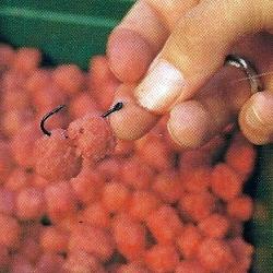 Fischen auf Karpfen