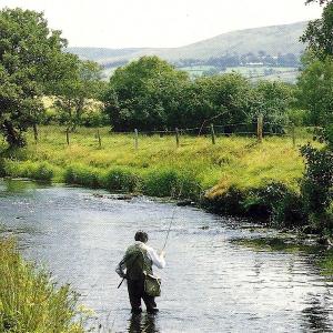 Fliegenfischer Moc Morgan