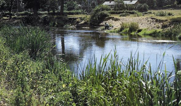 Angeln an breiten Flüssen bei Niedrigwasser, Ron Lees gibt Tipps