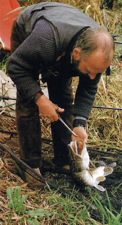 Angler John Watson