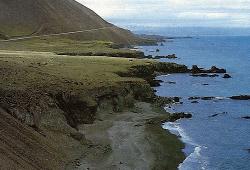 Brandungsangeln in Island