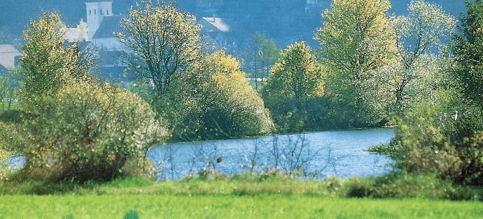Die Altmühl ist der fischreichste Fluss Deutschlands