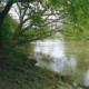 Die Leine bei Hannover hat zu einem fischreichen Fluss entwickelt