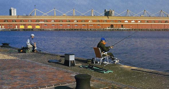 Fischen in Hafenbecken, Hafenanlagen, traditionelles Revier