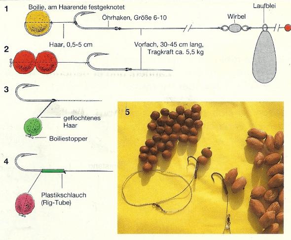 Hair-Rig - eine Montage, die das Karpfenangeln revolutioniert