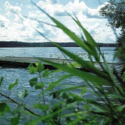 Havelseen, ein fischreiches Gewässersystem