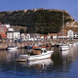 Kleine Häfen, Heimat für viele Fischarten und Schiffe