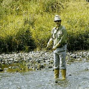 Weißfische, Forellen, Aale und Welse lohnen einen Angelausflug zum Fluss Lahn