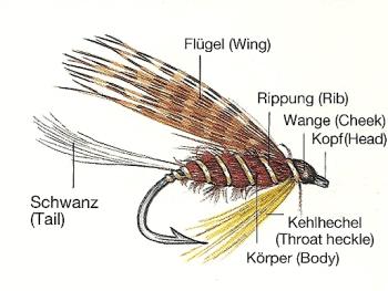 Naßfliegen und Nymphen, gute Fangaussichten zwischen Grund und Mittelwasser