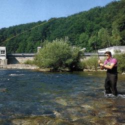Traun, einer der besten Salmonidenflüsse Europas