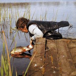 Wie man Fische richtig behandelt