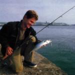 Makrelenzeit - Sommerzeit
