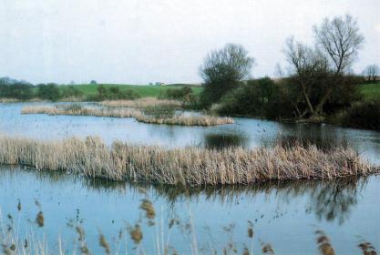 Unterlauf der Oder